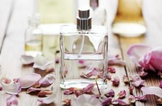 ¿Qué perfume usan las famosas?